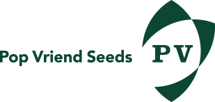 Pop-vriend-seeds
